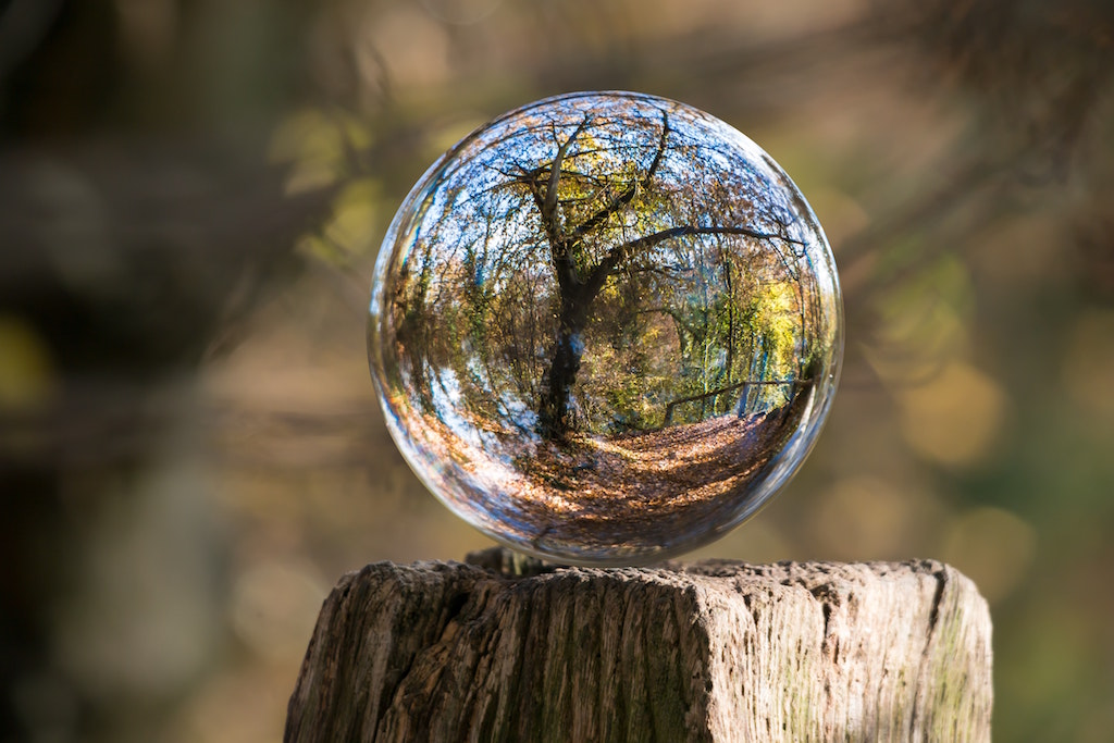 art-ball-ball-shaped-235615-small